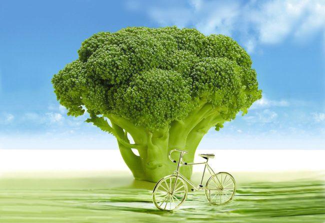 Minha aversão ao brócolis